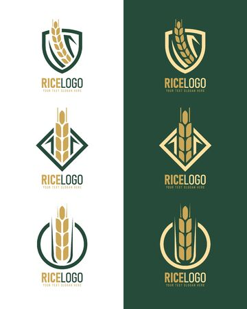 gold green rice logo with modern paddy rice in frame style vector collection design 向量圖像