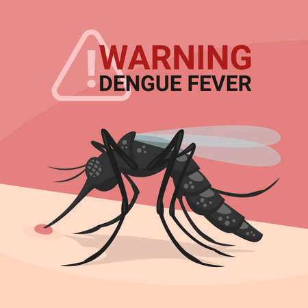 Warning dengue fever banner with closeup mosquitos Drinking blood on skin human vector design