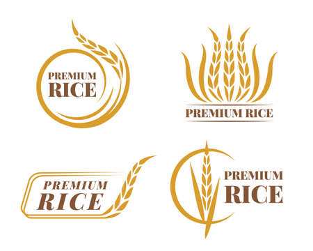 Rice emblems labels badges collection , gold paddy rice logo vector design 矢量图像