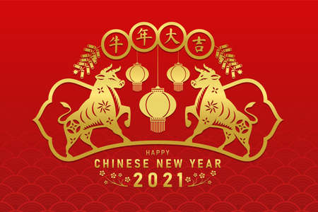 Happy chinese new year 2021 with gold twin ox zodiac , lantern and cracker sign  (china word mean year of the ox)