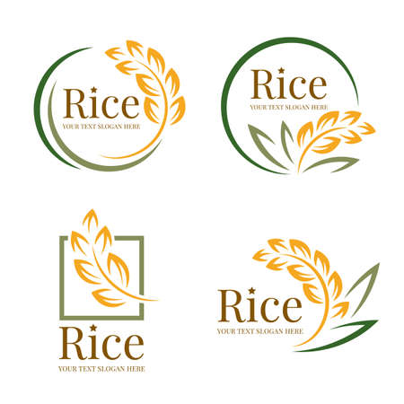 Rice logo organic grain wheat with yellow green paddy rice and leaves collection vector design