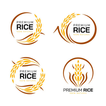 Premium rice - yellow brown paddy rice with circle style collection vector design Vettoriali
