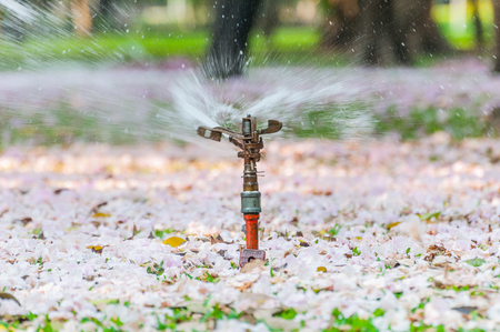 automatic sprinkler water system for irrigation, garden or Garden lawn sprinkler in action for pink blossom flower spring on the ground and green grass garden working early in the morning and evening.
