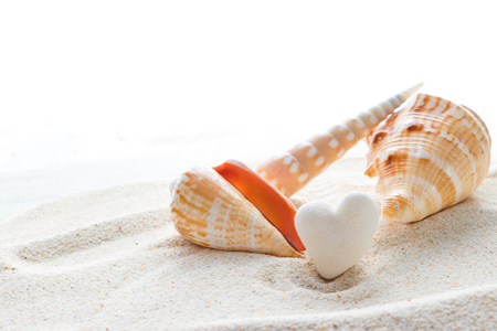 Heart-shaped coral stone and tropical shell Stock Photo