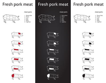 animal body part:  Fresh Pork meat parts Icons for packaging and info-graphic 1