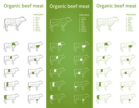 raw beef:  Organic Beef meat parts Icons for packaging and info-graphic 2