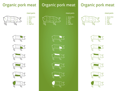 animal body part:  Organic Pork meat parts Icons for packaging and info-graphic 2  Organic Pork meat parts Icons for packaging and info-graphic 2