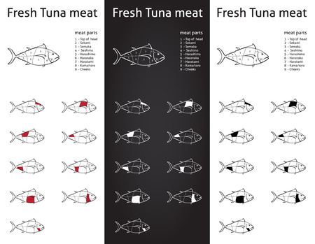 Fresh Tuna meat parts Icons for packaging and info-graphic 1