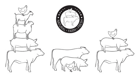 origin: Animals Pyramide, natural, farm, fresh