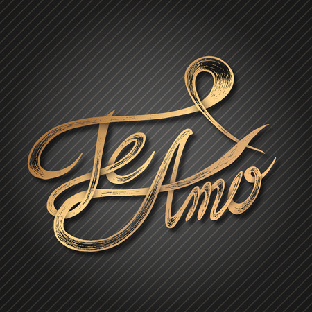 Te Amo  I love You  - Hand drawn quotes, 3d gold on blackboard Vector