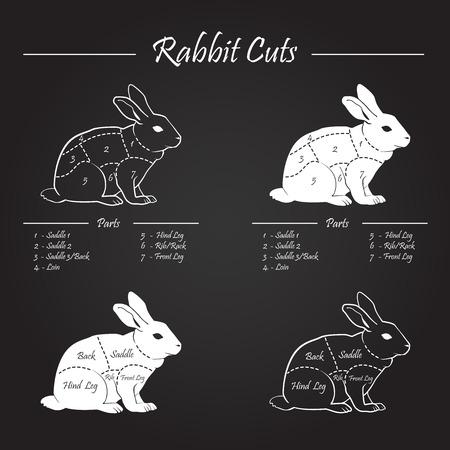 rabbit silhouette: RABBIT meat cuts diagram - white on blackboard