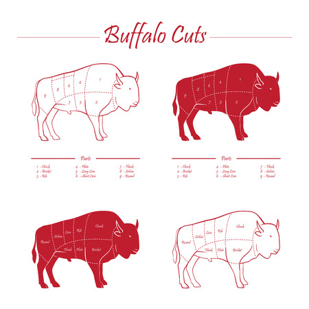 flank: BUFFALO MEAT CUTS SCHEME - elements on red on white