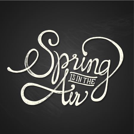 SPRING AIR - hand drawn calligraphy phrase on chalkboard Vector