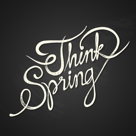 THINK SPRING - hand drawn calligraphy phrase on chalkboard Vector