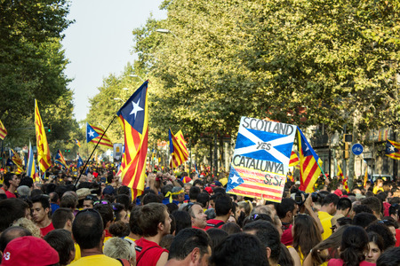 separatist: BARCELONA, SPAIN - SEPT. 11: People manifesting ingependence of Scotlandon and Catalonia at the strret of Barcelona during the National Day of Catalonia on Sept. 11, 2014 in Barcelona, Spain.