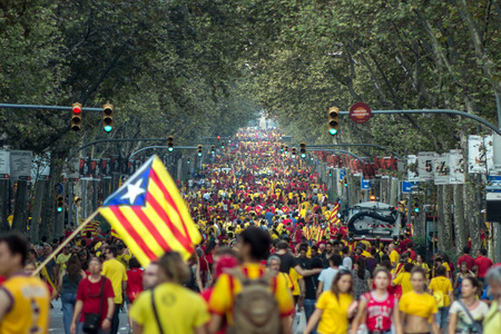 BARCELONA, SPAIN - SEPT. 11: People manifesting ingependence on the strret of Barcelona during the National Day of Catalonia on Sept. 11, 2014 in Barcelona, Spain. Editorial