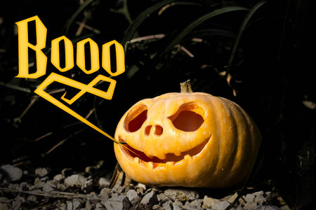 scary pumpkin: Boo typography Halloween scary pumpkin jack-o-lantern with a smile in dark grass thicket on the rocks Stock Photo