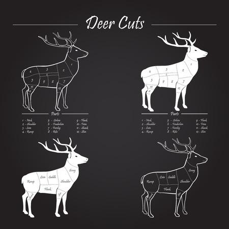 rumsteak: Cerfs  Venison r�gime de sch�ma de d�coupe de viande - �l�ments sur tableau noir Illustration