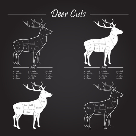 deer hunting: Deer  Venison meat cut diagram scheme - elements on chalkboard Illustration