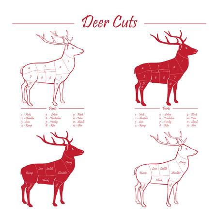 rumsteak: Cerfs  Venison r�gime de sch�ma de d�coupe de viande - �l�ments �nonc�s rouge sur fond blanc Illustration