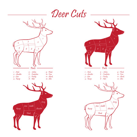 game meat: Deer  Venison meat cut diagram scheme - elements set red on white