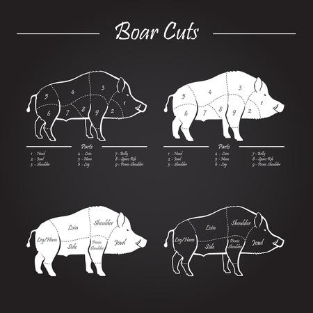 sanglier: Porcs sauvages, sanglier jeu viande coupée régime de diagramme - éléments situé sur tableau noir Illustration
