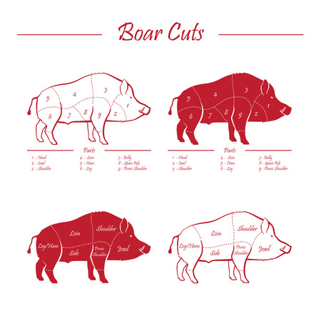 game meat: Wild hog, boar game meat cut diagram scheme - elements set red on white background Illustration