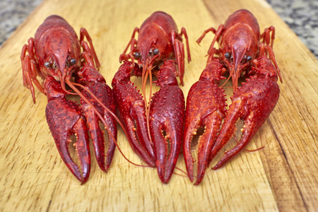 fluvial: Three Red river crayfish on cutting board in front perspective Stock Photo