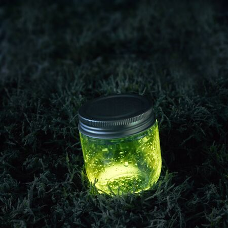 firefly: Close green light glowing jar of fairy tears on moss in the dark of the night.