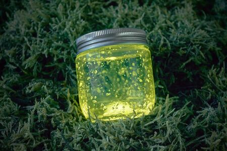 firefly: Close yellow light glowing jar on moss in the dark of the night. Stock Photo