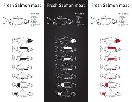 新鮮なサーモン肉図 3 つのバージョン