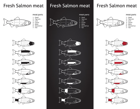 Fresh salmon meat diagram in three versions