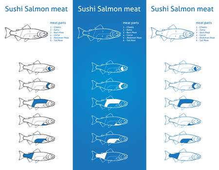 fish shop: Sushi salmon meat cuts diagram in three blue versions