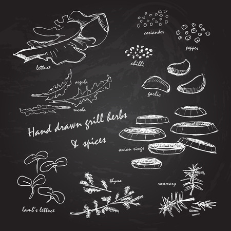 Hand drawn bbq grill herbs & spices white on chalkboard