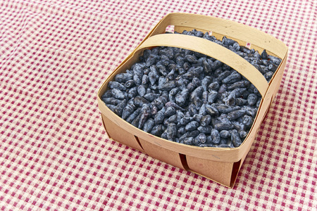 honeysuckle: Honeysuckle blue berry fruits in a wood basket on the red table wear