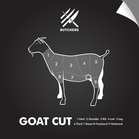 veal: Simply goat meat cutting diagram on blackboard sheet. Butchers sign. Illustration