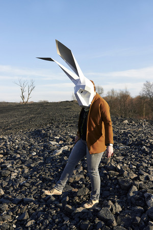 bahama: Easter rabbit in the geometric mask walking at spring rocks background