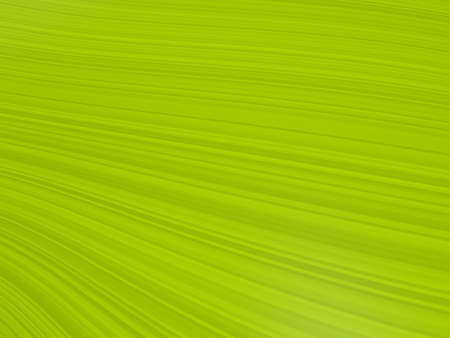 line background Lawn green