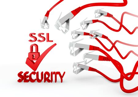 ciphering: Red  threatened virus 3d graphic with hacked SSL icon attacked by a cyber network Stock Photo
