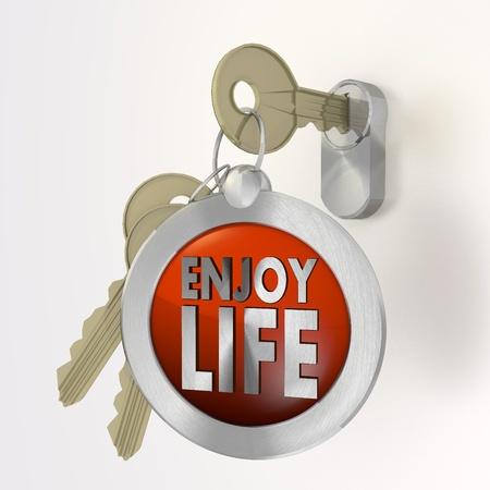 enjoy life: Red  safe security 3d graphic with isolated enjoy life symbol  on a key