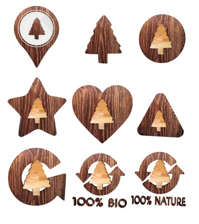 autumnn: 3d graphic with isolated abstract conifer icon set of wooden 3d buttons
