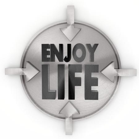 enjoy life: Pastello design metallico grigio grafica 3d con lucido icona godersi la vita sull'etichetta metallica Archivio Fotografico