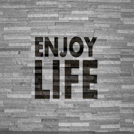 enjoy life: Grigio pastello creativo interno grafico 3d con elegante godersi la vita segno sulla nobile pietra trama