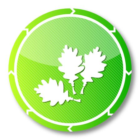 autumnn: renewable eco button with a oak leaves icon on it and circular arrows isolated on white background Stock Photo