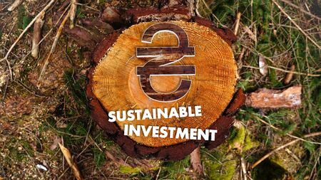 hryvna: concept image for sustainable investment in Ukraine Hryvna market with the symbol Ukraine Hryvna situated on an ecological wood
