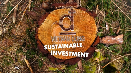 viet nam: concept image for sustainable investment in Viet Nam Dong market with the symbol Viet Nam Dong situated on an nature wood Stock Photo