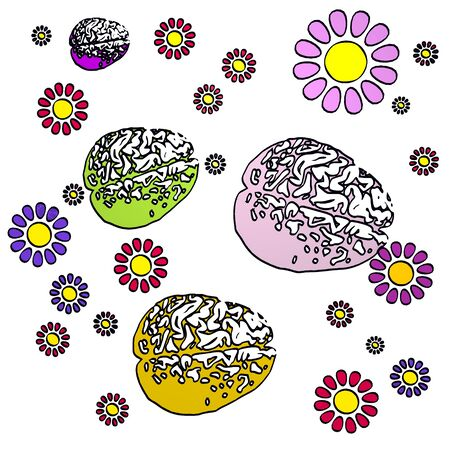 fantasize: four brain with fresh flowers on white background Stock Photo