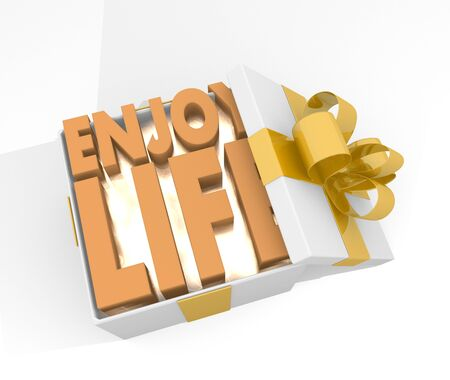 enjoy life: isolated 3d rendered xmas present with glittering enjoy life icon inside seen from top with white background