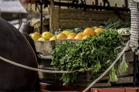 Fresh oranges and parsley in wooden box on a horse carriage