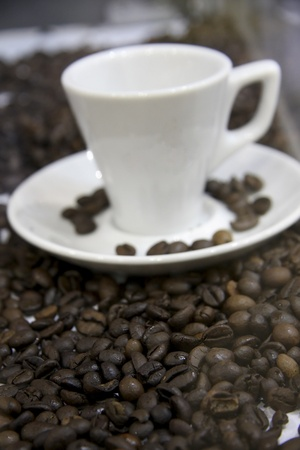Coffee beans with cup of coffee photo